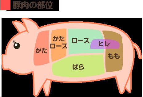 豚肉の部位の説明